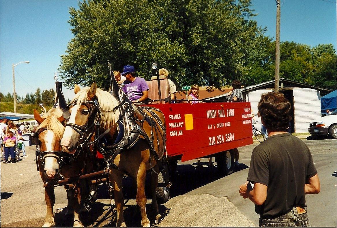 Horse drawn wagon MW