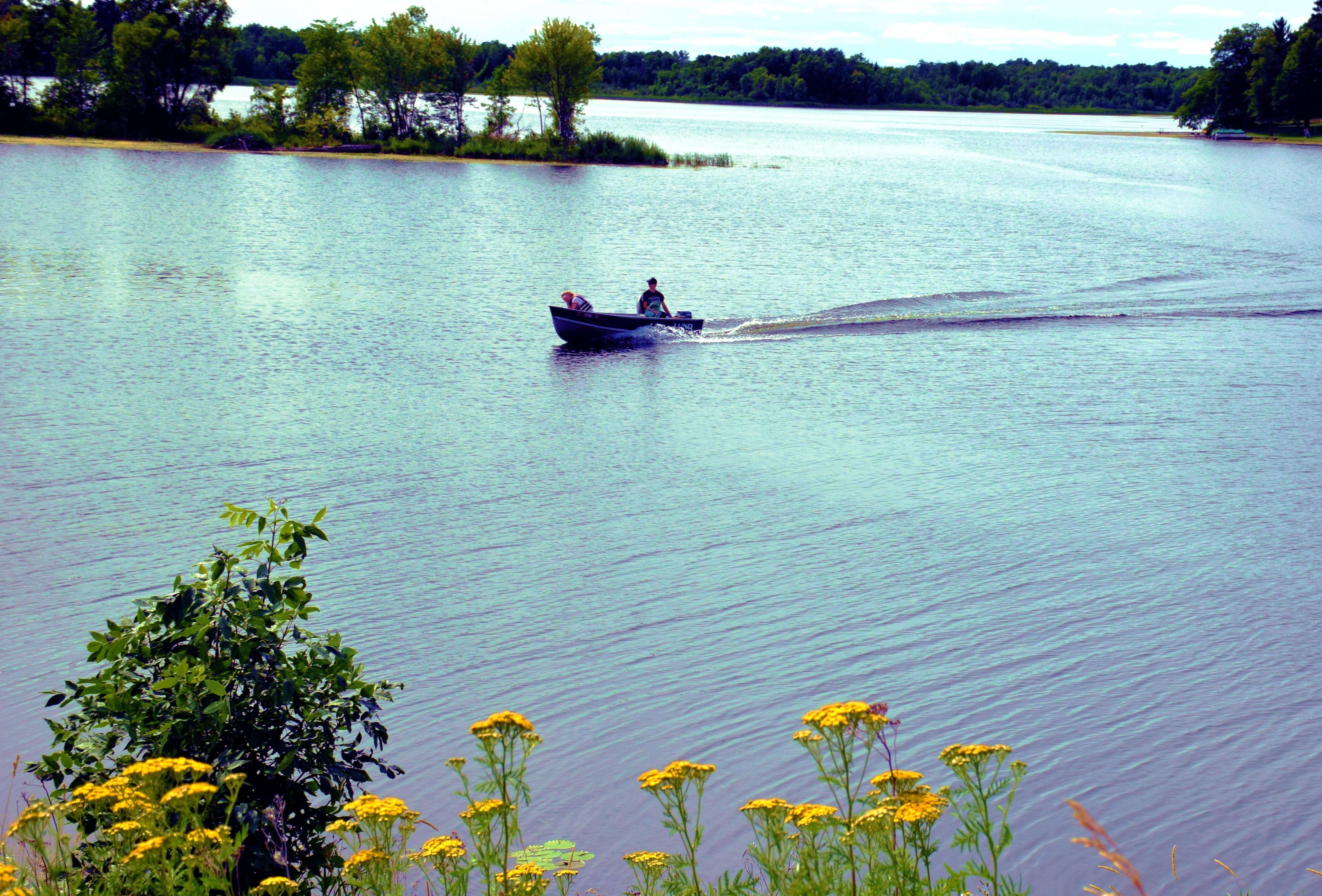 Swan Lake3