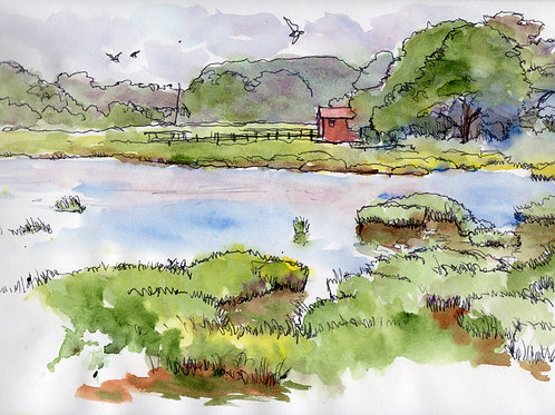 Calico Creek Sketch