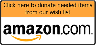 Person to Person - Foster care fundraiser - Amazon wishlist