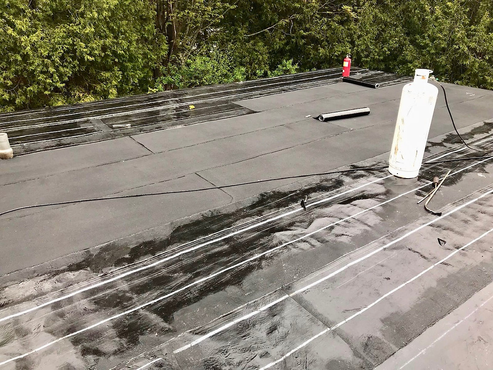 Leak Roofs