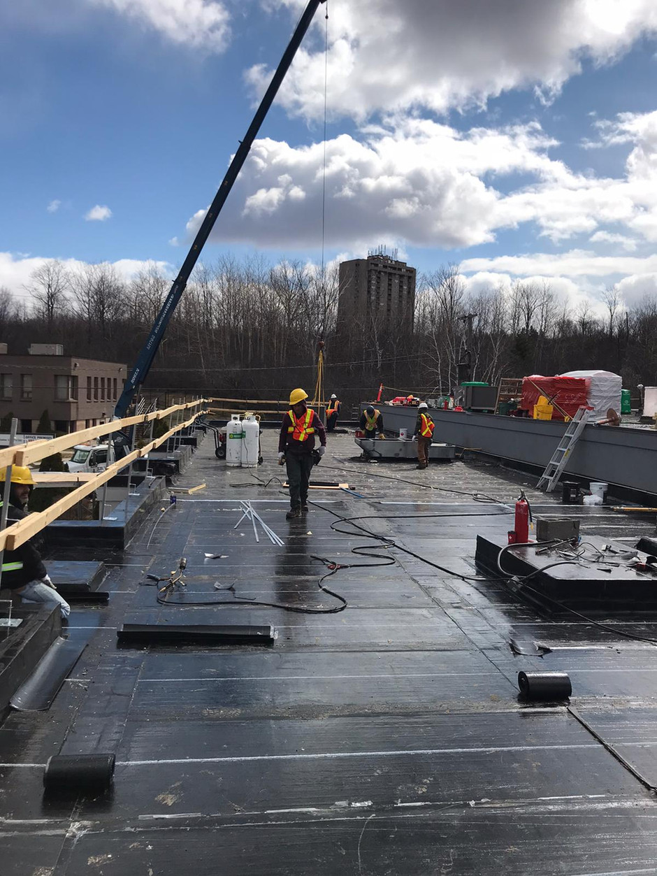 What Are The Common Reasons For A Flat Roof Problem?