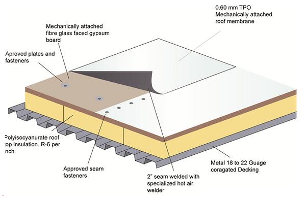 Thermoplastic polyolefin TPO
