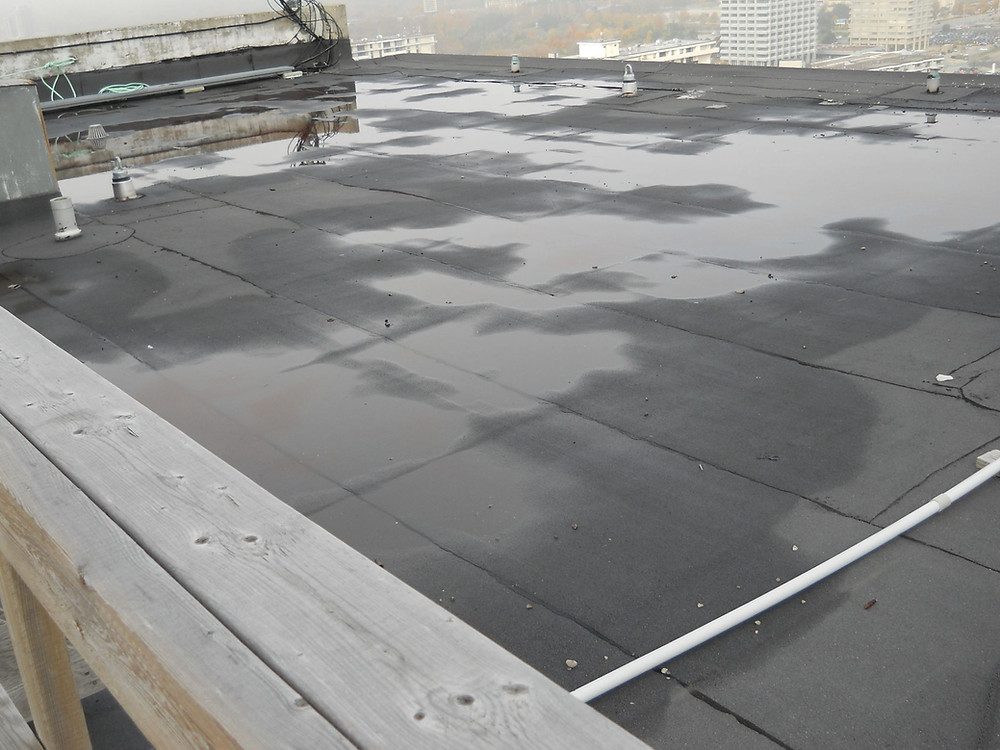 Detect Moisture In Roof Through Roofinf Contractors In Ottawa