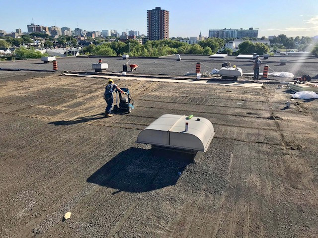 Important Things To Consider Before Replacing Your Roof
