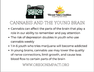 Cannabis and the Young Brain
