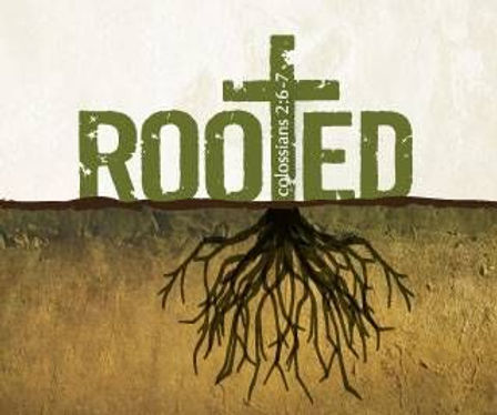 Rooted, Col. 2.6-7.jpg