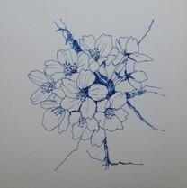 桜 Cerisier.06
