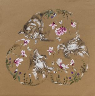 Rêve de chat III printemps