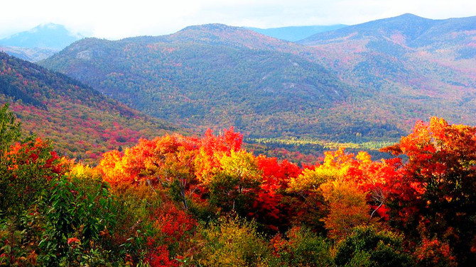 Getting your AUTUMN HEALTH on ~