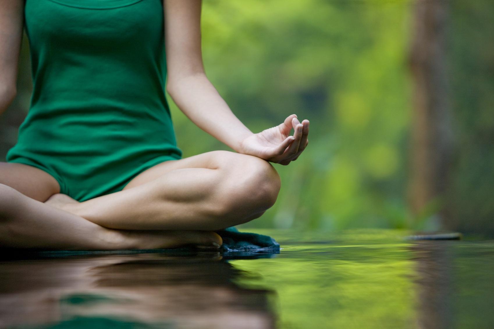 yogi3