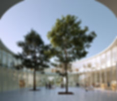 vue_atrium_jour_hdv2_2000px.jpg