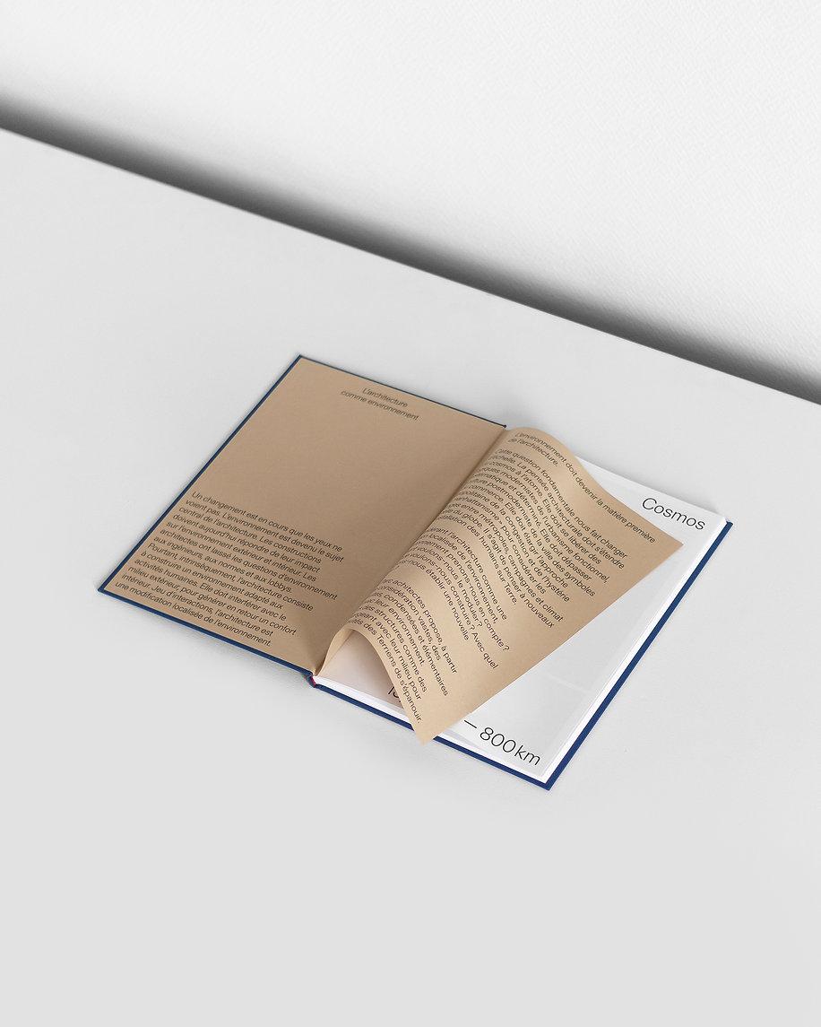 ACE-web-parcbook-bonjourgarcon03.jpg
