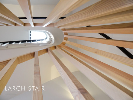 Larch Stair HeadlineSM.jpg