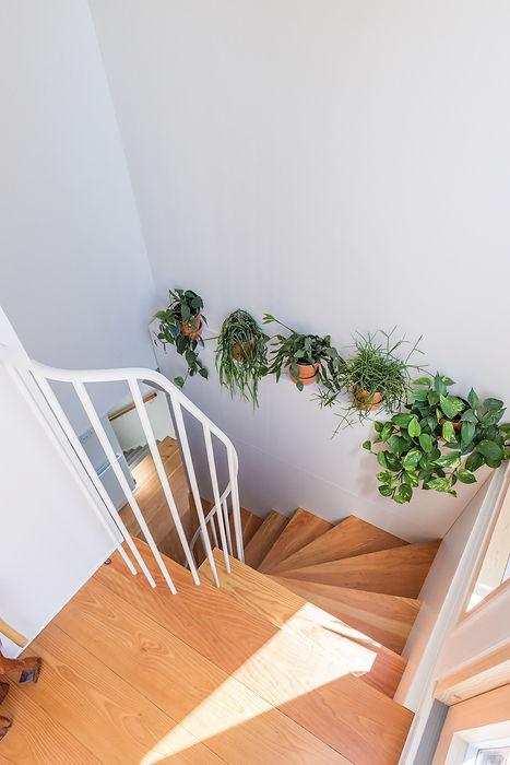Joe Mellows Douglas Fir Stair 6.jpg