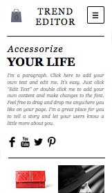 Fashion & Accessories website templates –  Accessories Shop