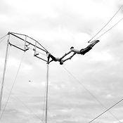 square-flyingtrap.jpg
