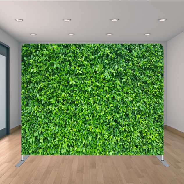 Premium Boxwood Backdrop