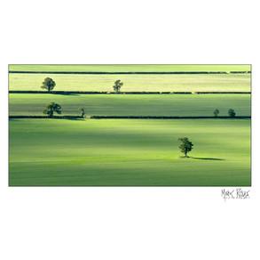Fine art - minimalism 2x1-3.jpg