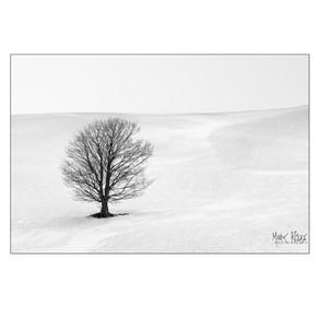 Fine art - minimalism 3x2-6.jpg