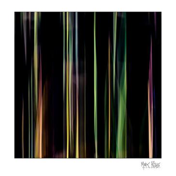 Cairngorms reeds 1x1-2.jpg