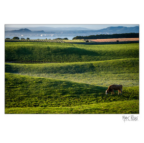 agricultural 02.jpg