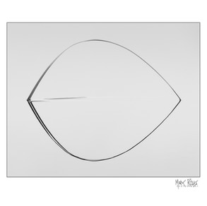 Reed reflection 5x4.jpg