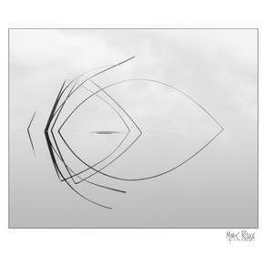 Fine art - minimalism 5x4-1.jpg