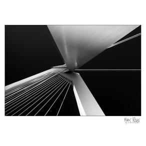 Erasmus bridge.jpg