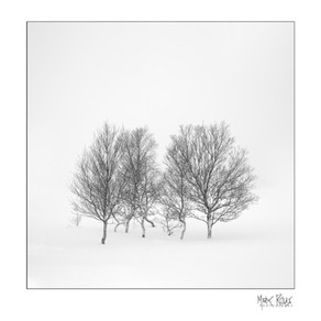 Fine art - minimalism 1x1-06.jpg