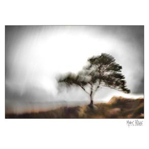 Impressionist landscapes-13.jpg