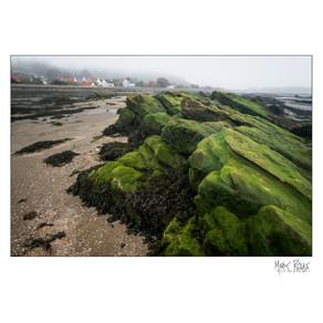 coast 18.jpg