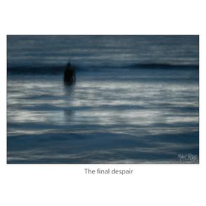 The final despair.jpg