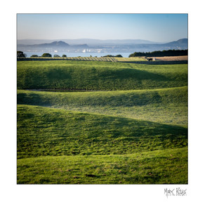 agricultural 06.jpg