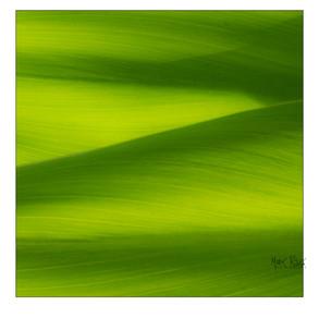 Impressionist landscapes-10.jpg