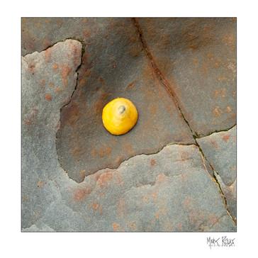 Rock-12.jpg