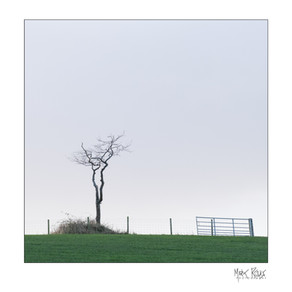 Fine art - minimalism 1x1-05.jpg