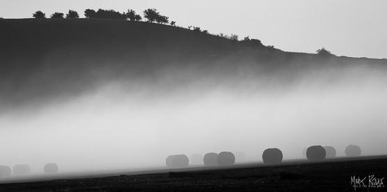 Harvest mist.jpg