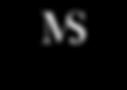 ms logo-02.png