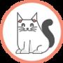 ביקור חד פעמי לחתול