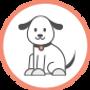ביקור חד-פעמי לכלב
