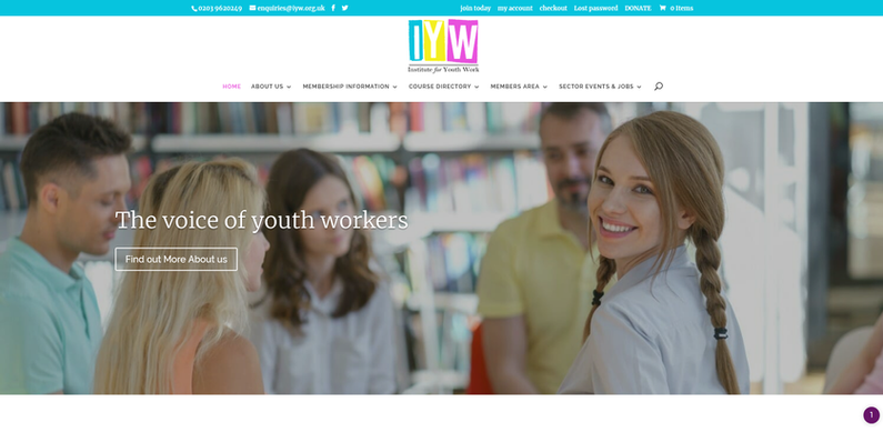 Institute for Youth Work