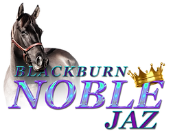 blackburn noble jaz_Transparent.png