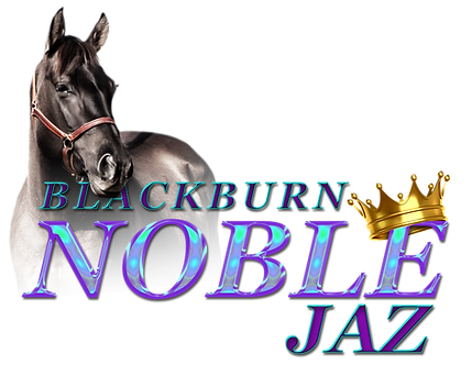 blackburn noble jaz_Transparent.png