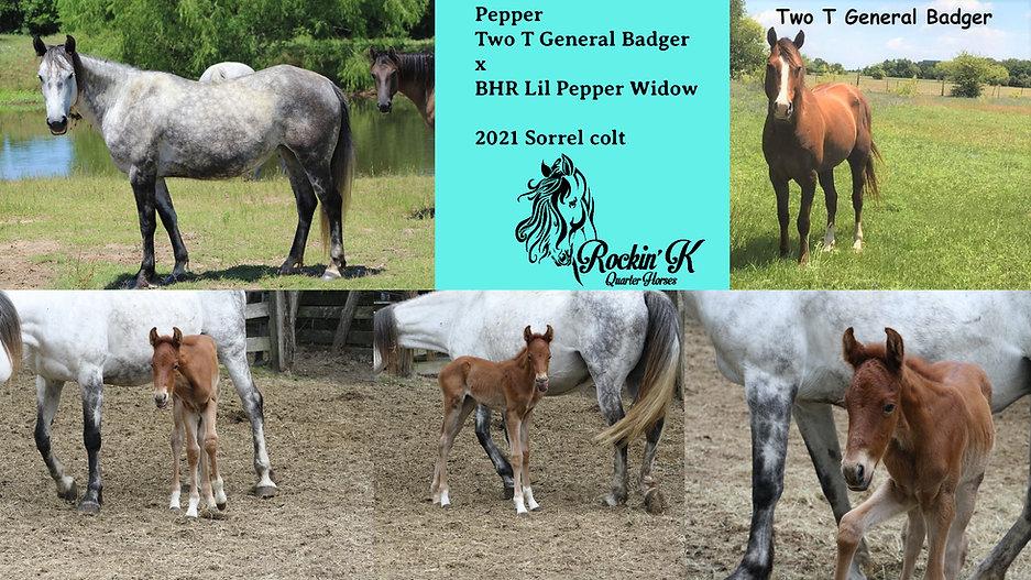 Pepper-2.jpg