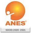 LOGO ANES-SOCIO 2020-2021.png