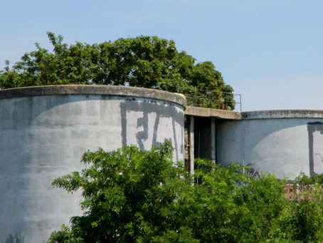 Dehors Brut : le tour de force de Concrete