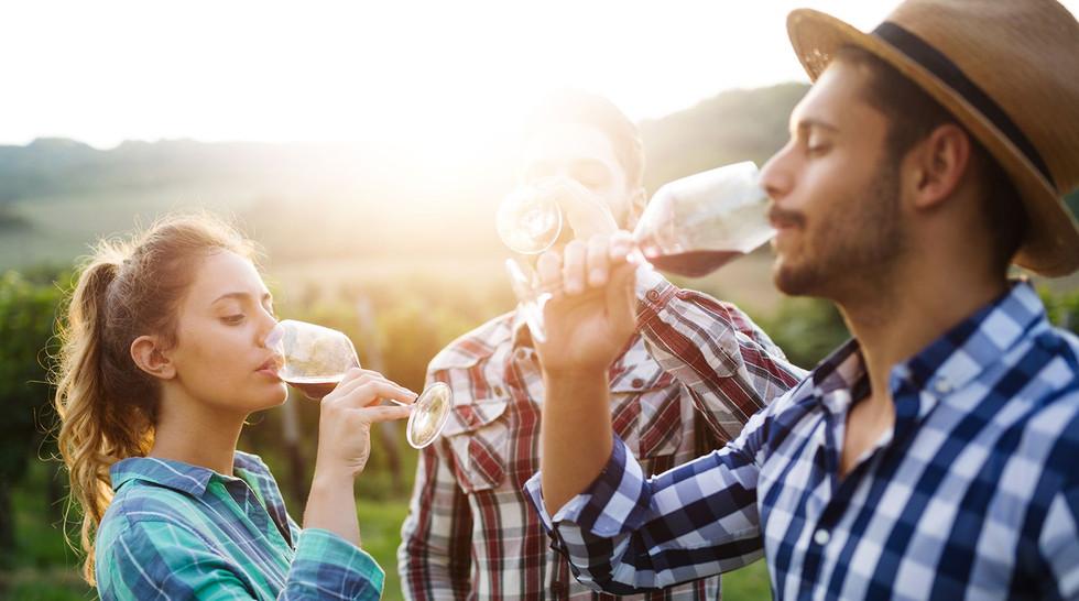 Friends drinking wine in a vineyard