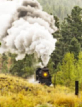Summerland%20(Train)_edited.jpg
