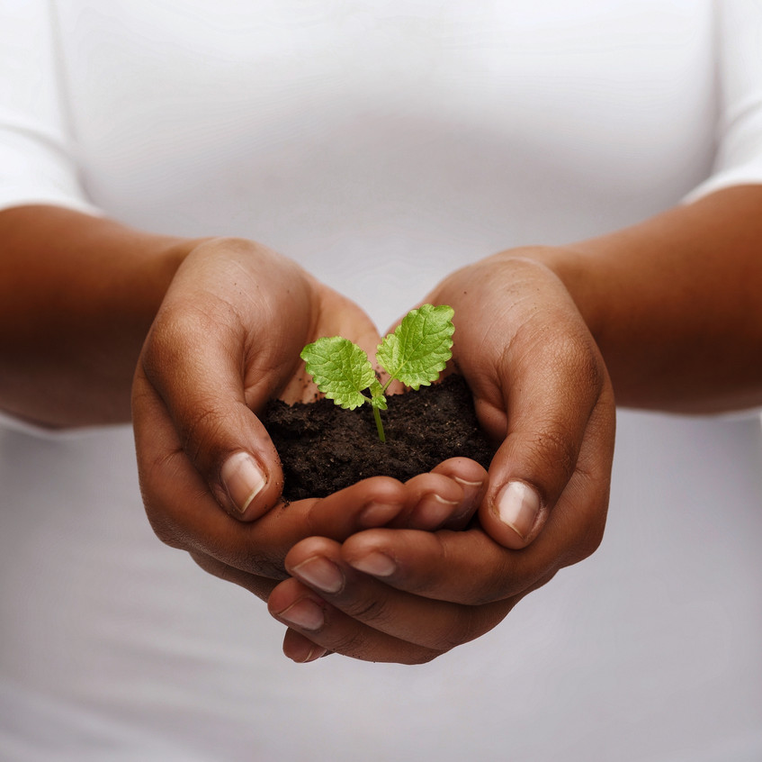 charity, environment, ecology, agriculture and nature concept - closeup of african american woman ha